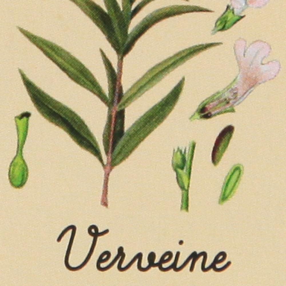 Marius Fabre olīveļļas ziepes «Verbena» ar Karite/Shea sviestu 150g
